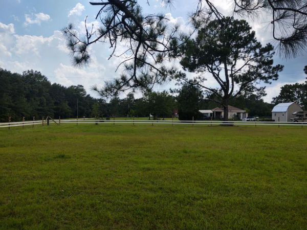 Horse Fence Build in Cantonment, FL